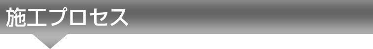 sekoupurocess-title2